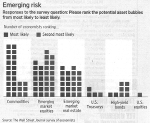 Emerging risk – Responses to the survey question: Please rank the potential asset bubbles from most likely to least likely. - Quelle: Wall Street Journal, 13.11.2009, Seite 9.