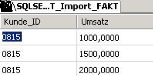 2011-06-24_crew_T_Import_Fakt_2