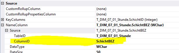 Einstellung der Name usage Eigenschaft in DataTools