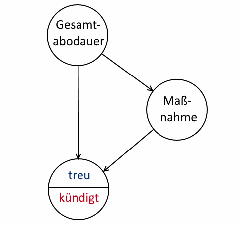 Kausaldiagramm