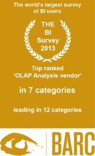 BI Survey 2013: BARC Top Ranking Siegel