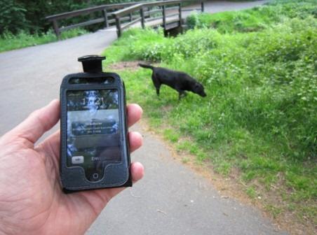 Notifikation am Smartphone - wann immer, wo immer