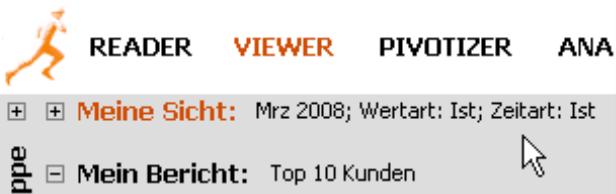 Bericht mit Sichtbeschreibung (Mrz 2008; Wertart: Ist; Zeitart: Ist) im Modus Viewer