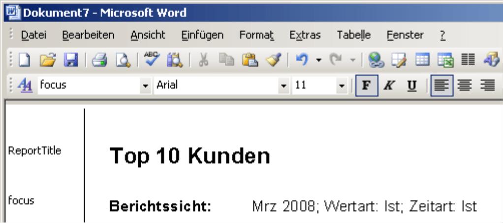 Microsoft Word mit ReportTitle (Top 10 Kunden) und Berichtssicht (Mrz 2008; Wertart: Ist; Zeitart: Ist)