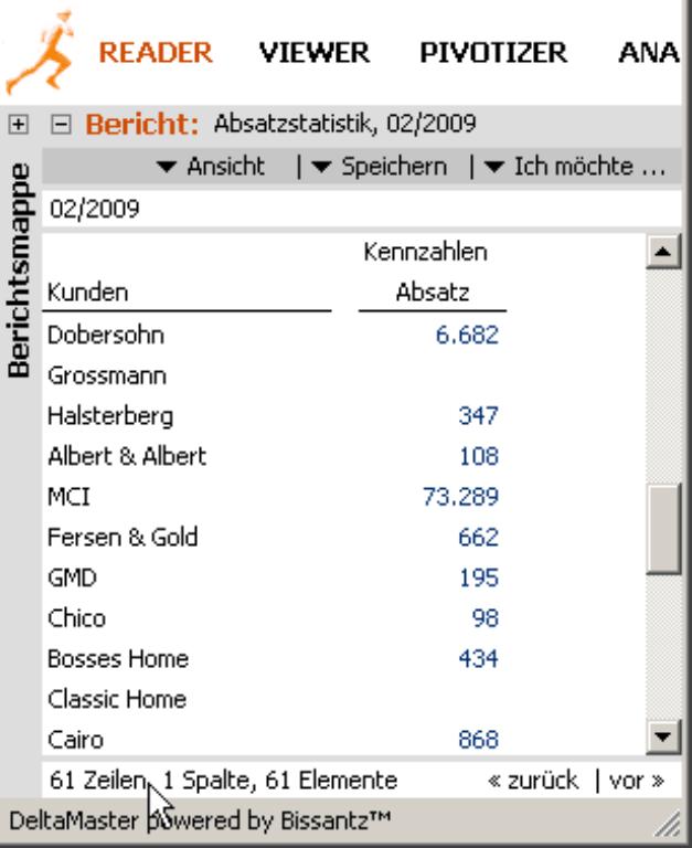 Bericht inklusive der Statusleiste unterhalb des Berichts (61 Zeilen, 1 Spalte, 61 Elemente) im Modus Reader