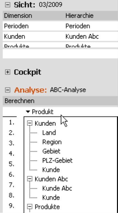 Ausschnitt einer ABC-Analyse mit parallelen Hierarchien in Hierarchiemenüs