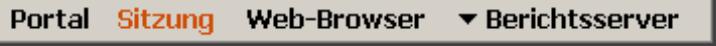 Statusleiste mit den Seiten Portal, Sitzung, Web-Browser und einem Plug-in wie Berichtsserver rechts unten
