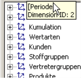 Tooltipp im MDX-Editor