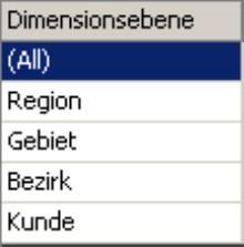 erste Spalte der Zuordnungstabelle für die Ebenen unserer Kundendimension: All, Region, Gebiet, Bezirk oder Kunde