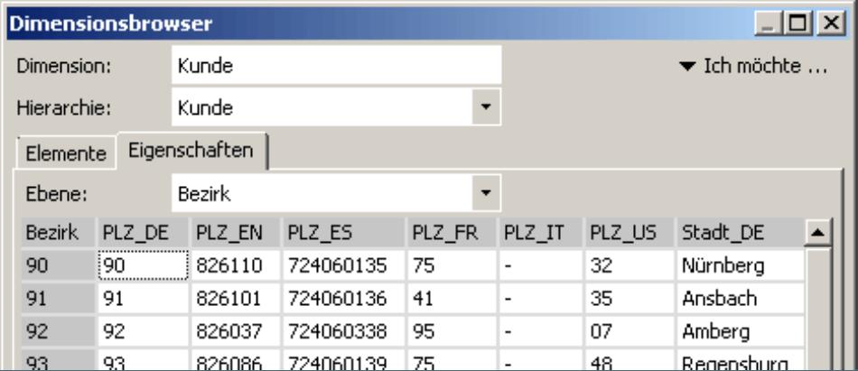 Registerkarte Eigenschaften im Dimensionsbrowser