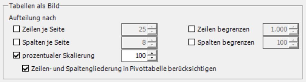 Auswahl Zeilen je Seite, Zeilen begrenzen, Spalten je Seite, Spalten begrenzen, prozentualer Skalierung und Zeilen- und Spaltengliederung in Pivottabelle berücksichtigen bei Tabellen als Bild