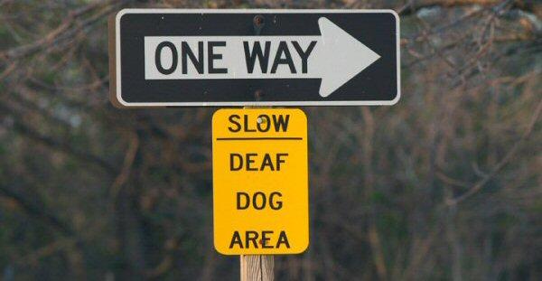 one-way-deaf-dog-area_600px.jpg